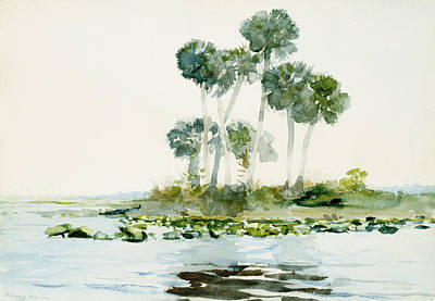 Fisherman Painting - St Johns River by Celestial Images