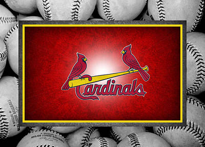 Bat Photograph - St Louis Cardinals by Joe Hamilton