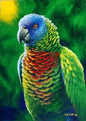 St. Lucia Parrot Painting - St. Lucia Parrot - Fine Colours by Christopher Cox