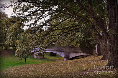 Indiana Photograph - St Mary Of Woods Bridge With Trees by Amy Lucid
