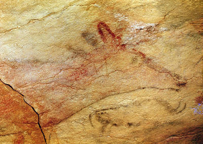 Cave Painting - Stag From The Caves Of Altamira  Cave Painting  by Prehistoric