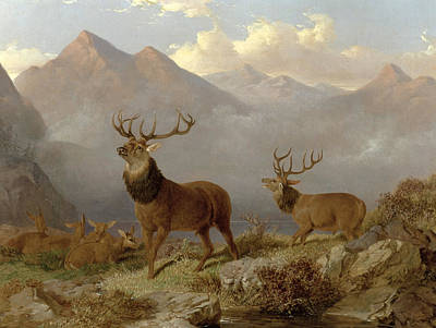 Wildlife Landscape Painting - Stags And Hinds In A Highland Landscape by John Frederick Herring Jnr