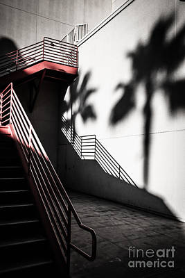 Photograph - Stairs And Shadows Of Palm Trees by Sviatlana Kandybovich