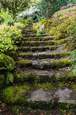 Pathway Photograph - Stairway In The Secret Garden by Priya Ghose