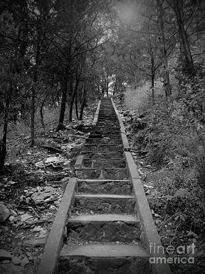 Stairway In The Woods Print by Tina Miller