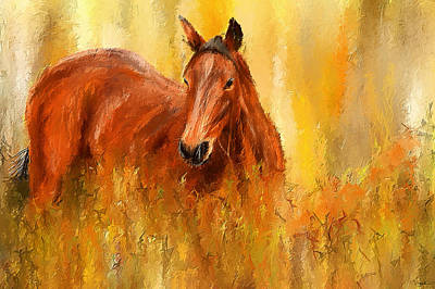 Stallion In Autumn - Bay Horse Paintings Print by Lourry Legarde
