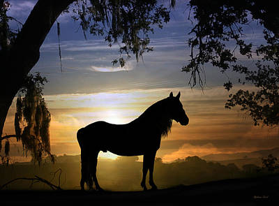 Horse Photograph - Stallion Sunset by Stephanie Laird
