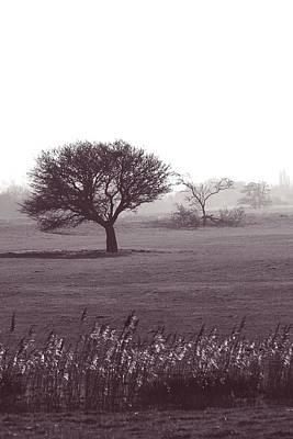 Feild Photograph - Stand Alone by Sharon Lisa Clarke