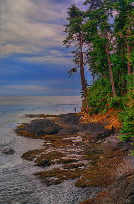 Juan De Fuca Photograph - Standing By The Sea by Greg Norrell