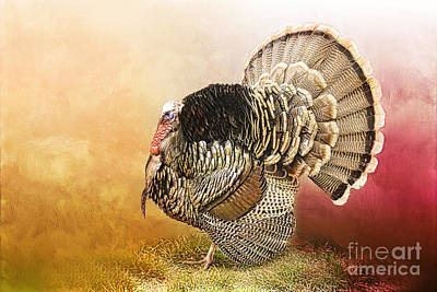Turkey Digital Art - Standing Proud by Betty LaRue