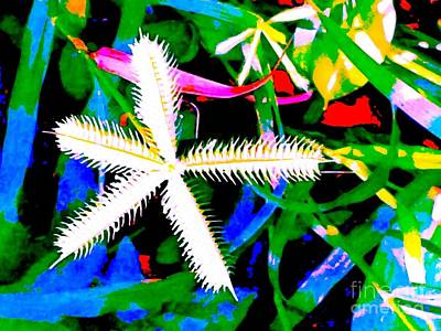 Pop Art Digital Art - Star Bloom by Nina Kaye