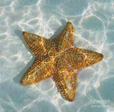 Starfish Print by Jon Neidert