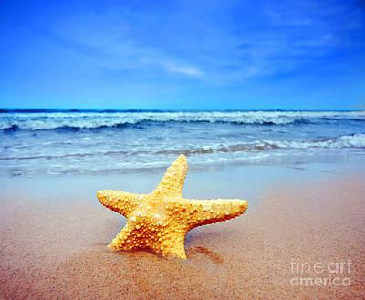 Starfish Photograph - Starfish On A Beach   by Michal Bednarek