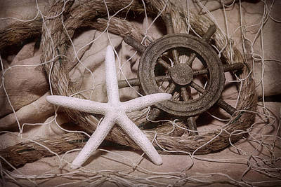 Net Photograph - Starfish Still Life by Tom Mc Nemar