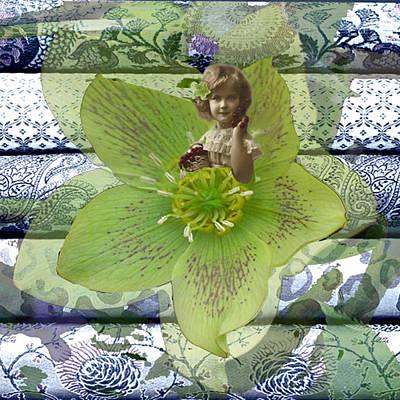Stargazer Lily Original by Paige White