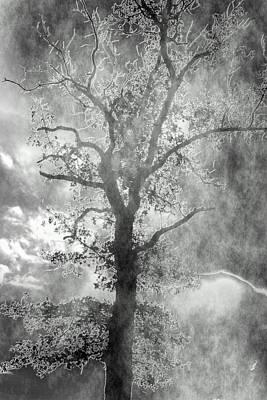 The Dark Side Print by Annette Hugen