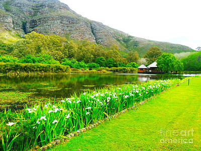 Stark Conde Wine Estate Stellenbosch South Africa 3 Print by Charl Bruwer