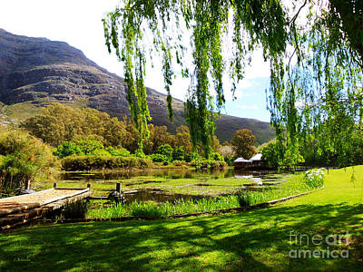 Stark Conde Wine Estate Stellenbosch South Africa Print by Charl Bruwer