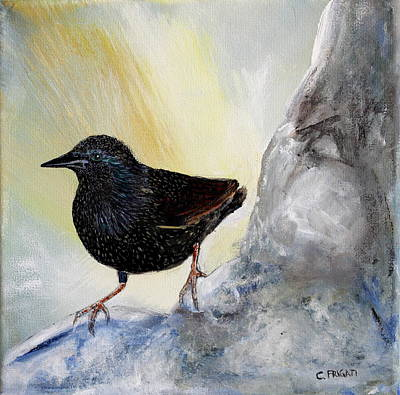 Starlings Painting - Starling by Cecilia Frigati