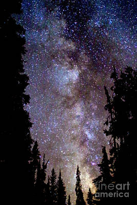 Starry Night -  The Milky Way Print by Douglas Taylor