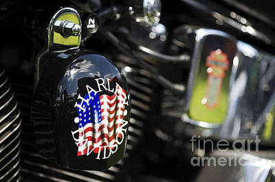 Stars And Stripes Harley D Print by Tim Gainey