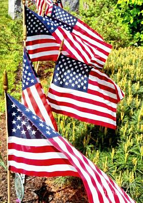 Strong America Photograph - Stars And Stripes by Janine Riley