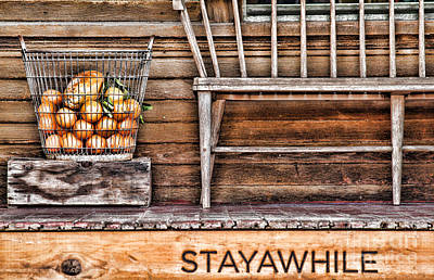 Stayawhile Print by Diana Sainz