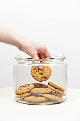 Steal Photograph - Stealing Cookies From The Cookie Jar by Elena Elisseeva