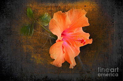 Stone Age Art Digital Art - Steely Hibiscus by The Stone Age