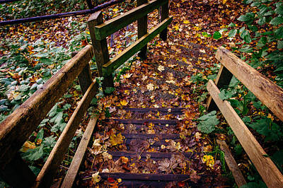 Step Down Print by Pati Photography