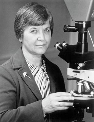 Stephanie Kwolek Print by Hagley Museum And Archive