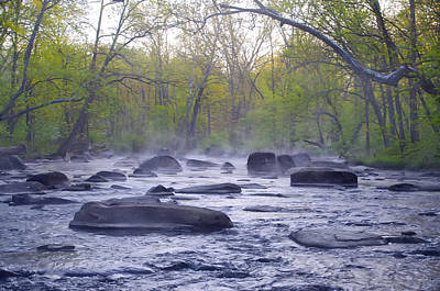 Stepping Stones Print by Bill Cannon