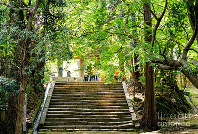 Temple Photograph - Steps To Serenity - The Beauty Of Japanese Zen Buddhist Temple Grounds by David Hill