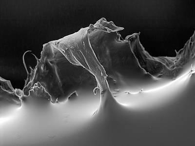 Polymer Photograph - Sticking Plaster by Ammrf, University Of Sydney