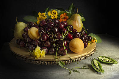 Still Life With Fruits And Pepper Print by Elena Nosyreva