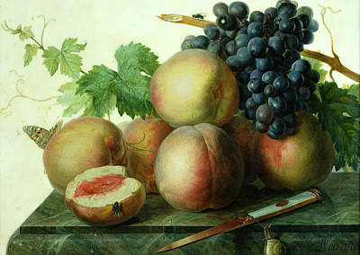 Flies Painting - Still Life With Peaches And Grapes On Marble by Jan Frans van Dael
