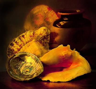 Abalone Photograph - Still Life With Shells by Theresa Tahara