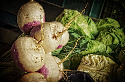 Lettuce Digital Art - Still Life With Turnips by Mary Machare