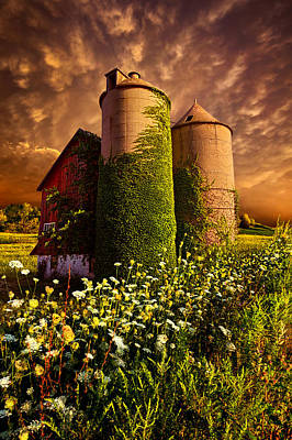 Love Laces Photograph - Stillness Of Dawn by Phil Koch