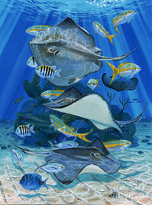 Eagle Ray Painting - Stingray City Re0011 by Carey Chen