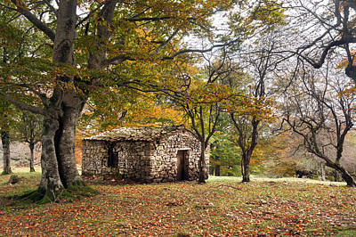 Stone Cabin In Autumn Forest Print by Mikel Martinez de Osaba