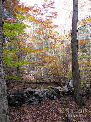 Stonewall In The Woods Print by Linda Marcille