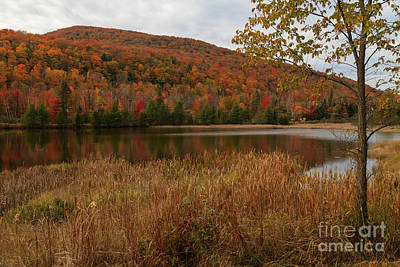 Lyndon Photograph - Stopping On Lynburke Road by Charles Kozierok
