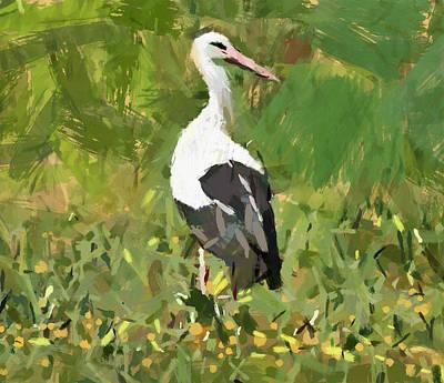 Stork Digital Art - Stork In Grass by Yury Malkov