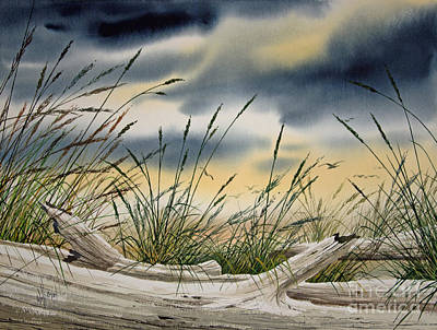 Storm Along The Shore Print by James Williamson