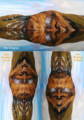 Photograph - Strange Faces In Water Reflection by Faouzi Taleb