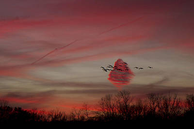 Photograph - Strange Fall Sunset by Stephen EIS