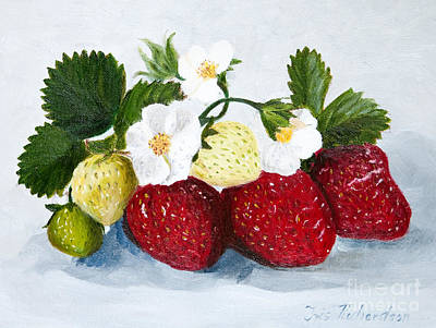 Strawberries With Blossoms Print by Iris Richardson