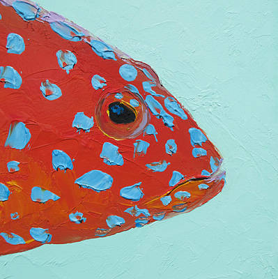 Fishing Painting - Strawberry Grouper Fish by Jan Matson