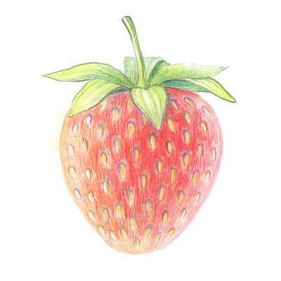 Strawberry Print by Olga Zelenkova